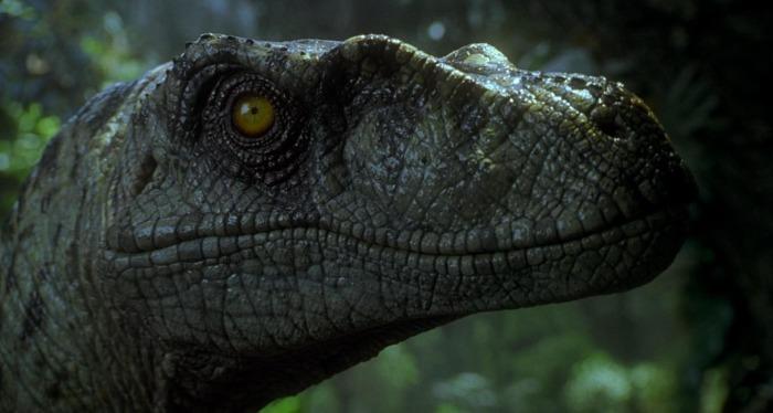 Jurassic Park 3 Velociraptor Jurassic Park 3