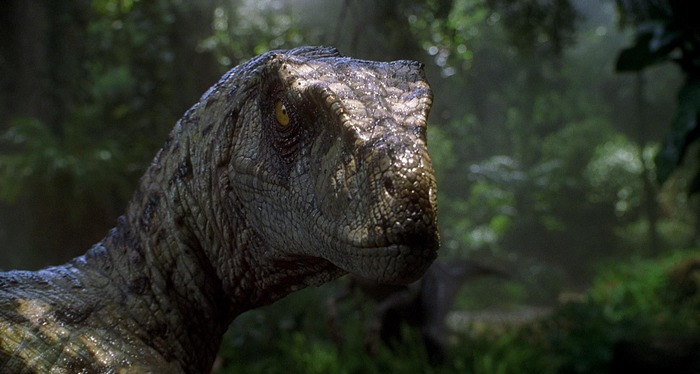 Velociraptor Jurassic Park 3 Velociraptor