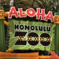 Jurassic World Filming at Honolulu Zoo