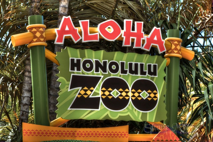 Honolulu Zoo Jurassic World Jurassic World Filming at Honolulu Zoo