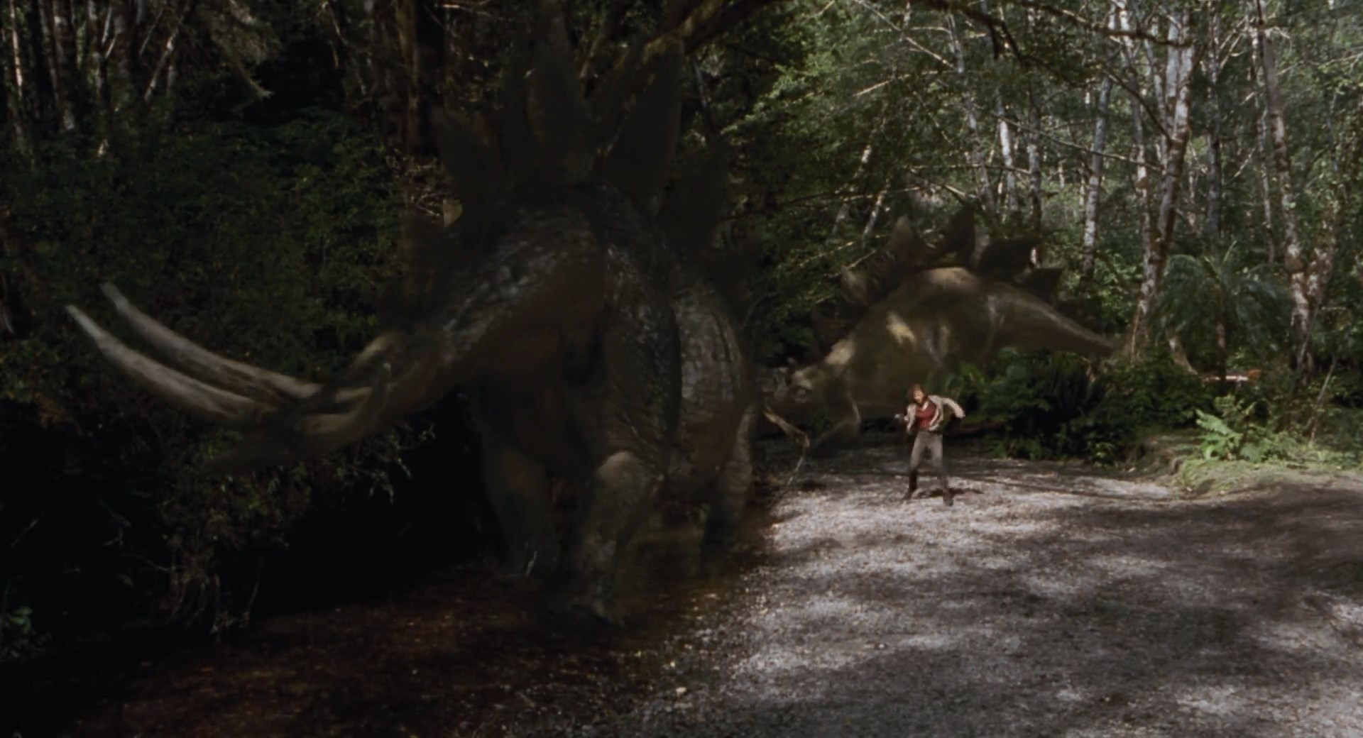 stegosaurus04 Stegosaurus