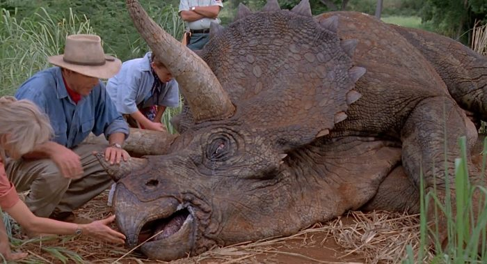 triceratops01 Triceratops