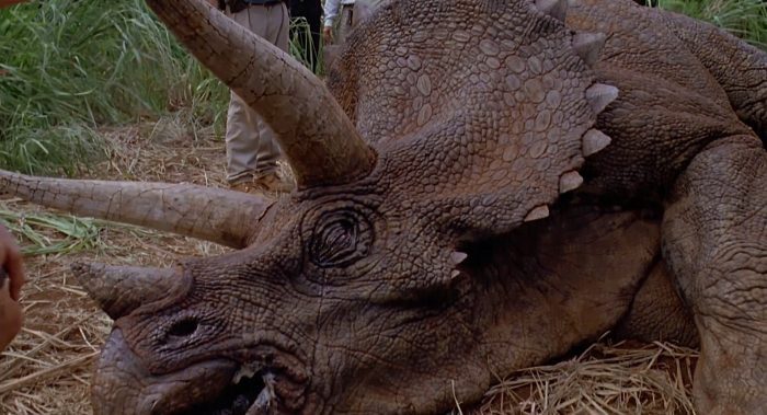 triceratops03 Triceratops